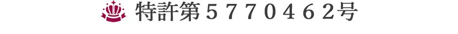 特許第5770462号